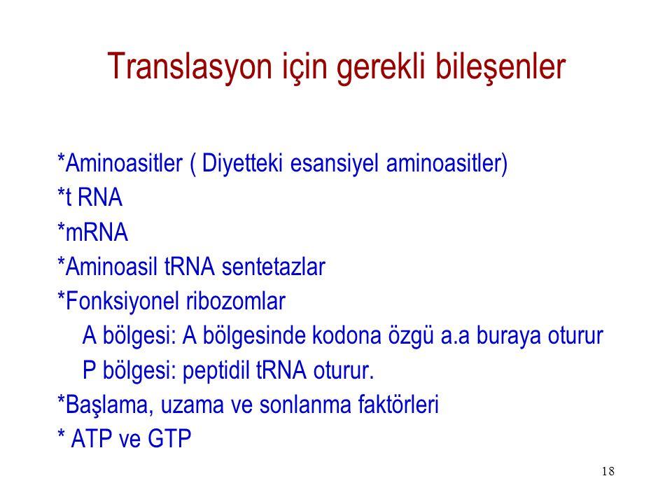 Translasyon için gerekli bileşenler