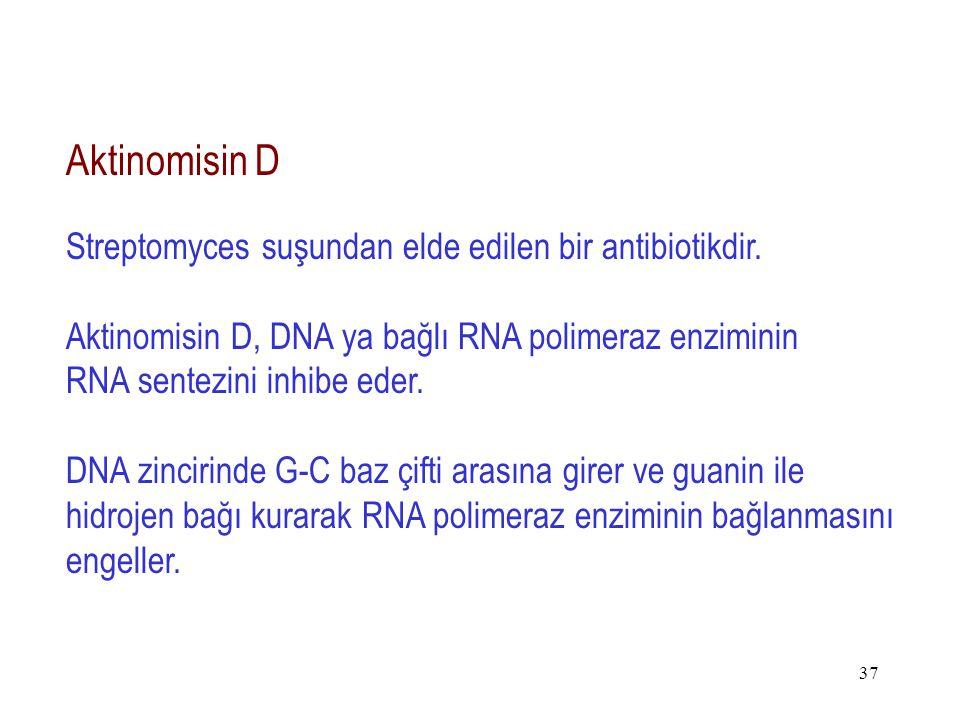 Aktinomisin D Streptomyces suşundan elde edilen bir antibiotikdir.