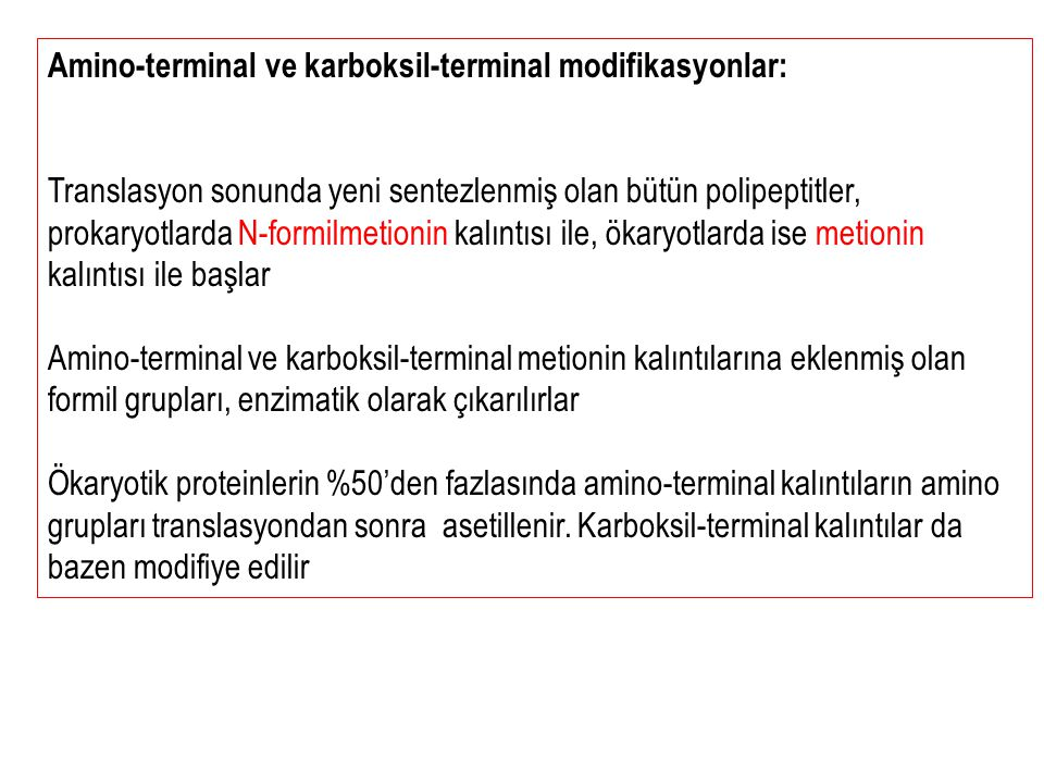 Amino-terminal ve karboksil-terminal modifikasyonlar: