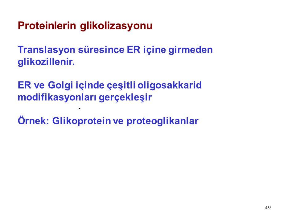Proteinlerin glikolizasyonu