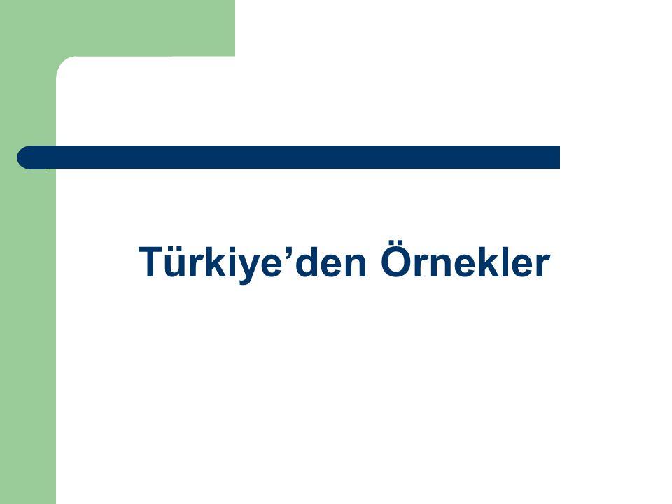 Türkiye'den Örnekler