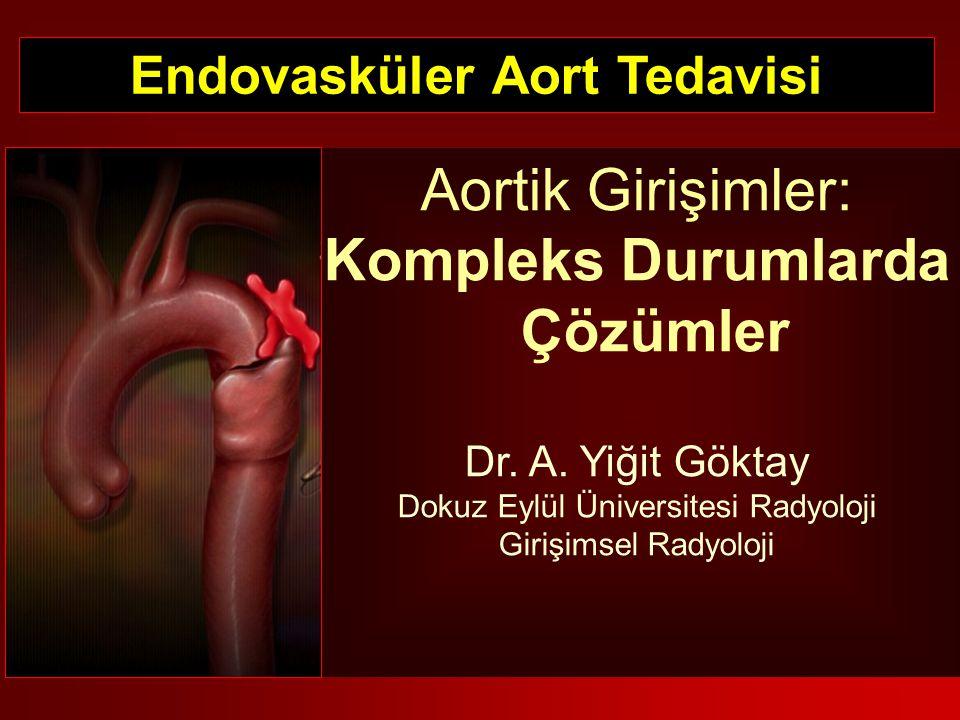 Endovasküler Aort Tedavisi
