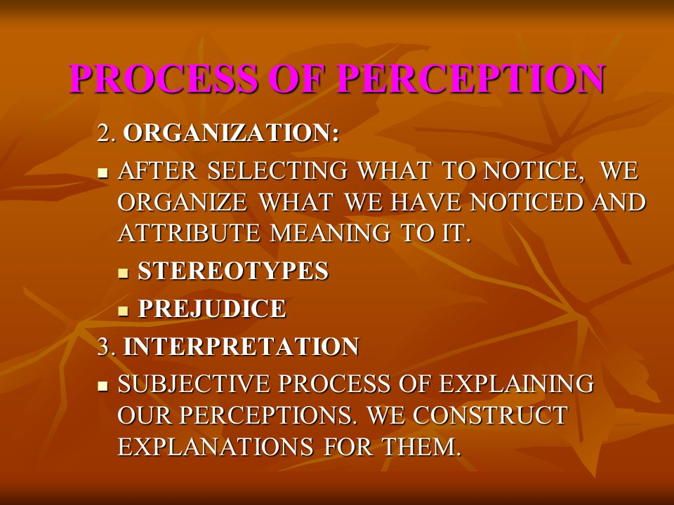 PROCESS OF PERCEPTION 2. ORGANIZATION: