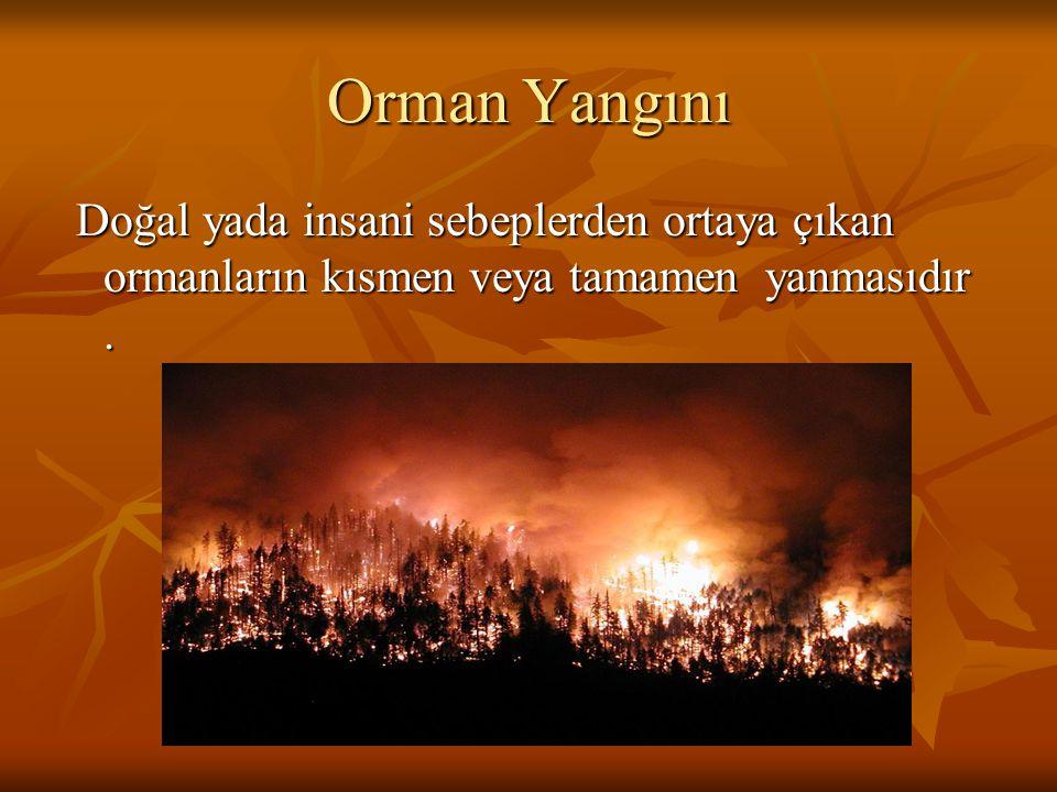 Orman Yangını Doğal yada insani sebeplerden ortaya çıkan ormanların kısmen veya tamamen yanmasıdır .