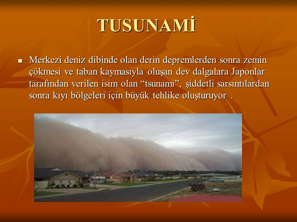 TUSUNAMİ