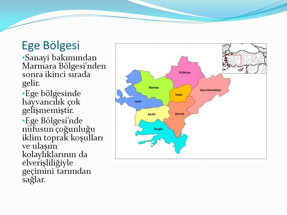 Ege Bölgesi Sanayi bakımından Marmara Bölgesi nden sonra ikinci sırada gelir. Ege bölgesinde hayvancılık çok gelişmemiştir.