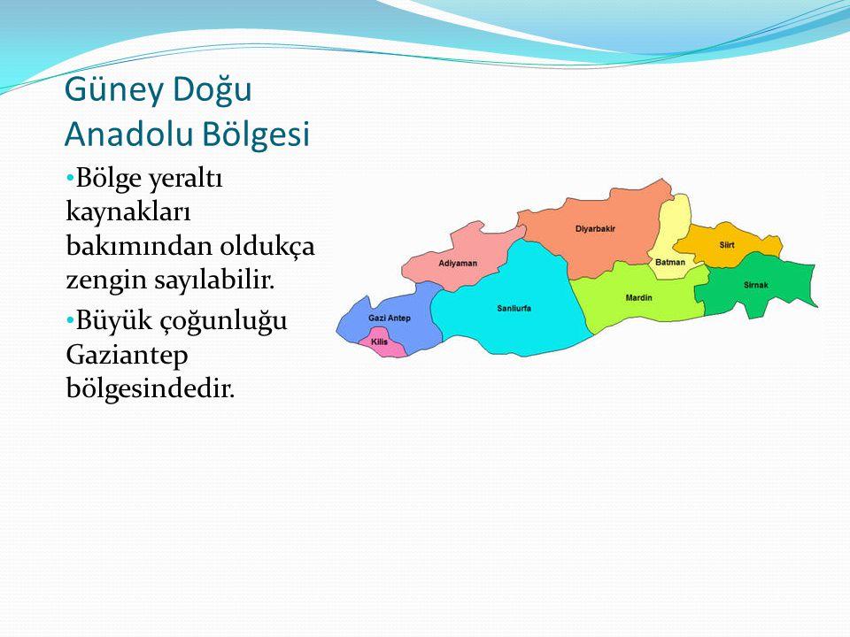 Güney Doğu Anadolu Bölgesi