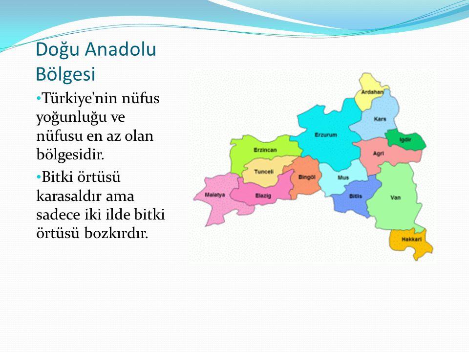 Doğu Anadolu Bölgesi Türkiye nin nüfus yoğunluğu ve nüfusu en az olan bölgesidir.