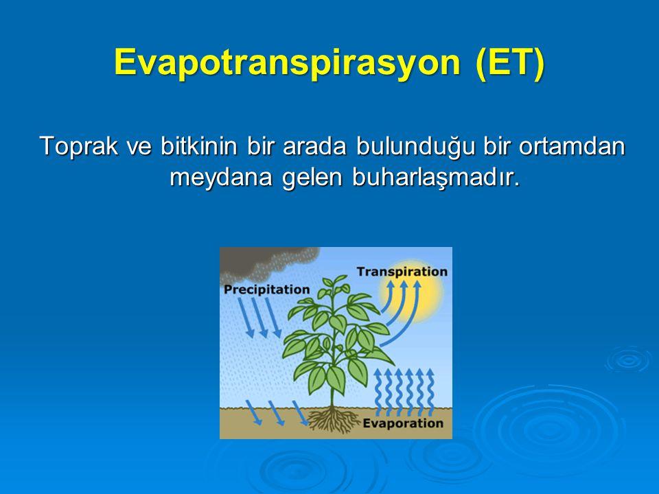 Evapotranspirasyon (ET)