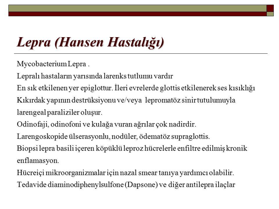 Lepra (Hansen Hastalığı)