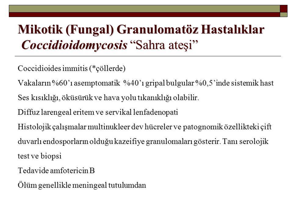 Mikotik (Fungal) Granulomatöz Hastalıklar Coccidioidomycosis Sahra ateşi