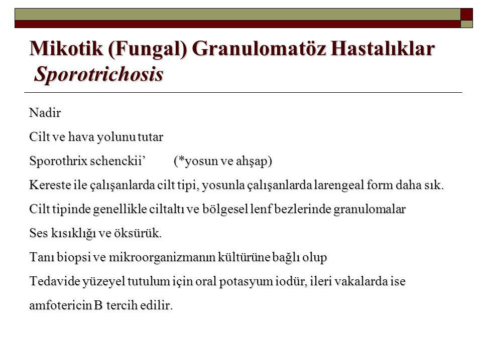 Mikotik (Fungal) Granulomatöz Hastalıklar Sporotrichosis