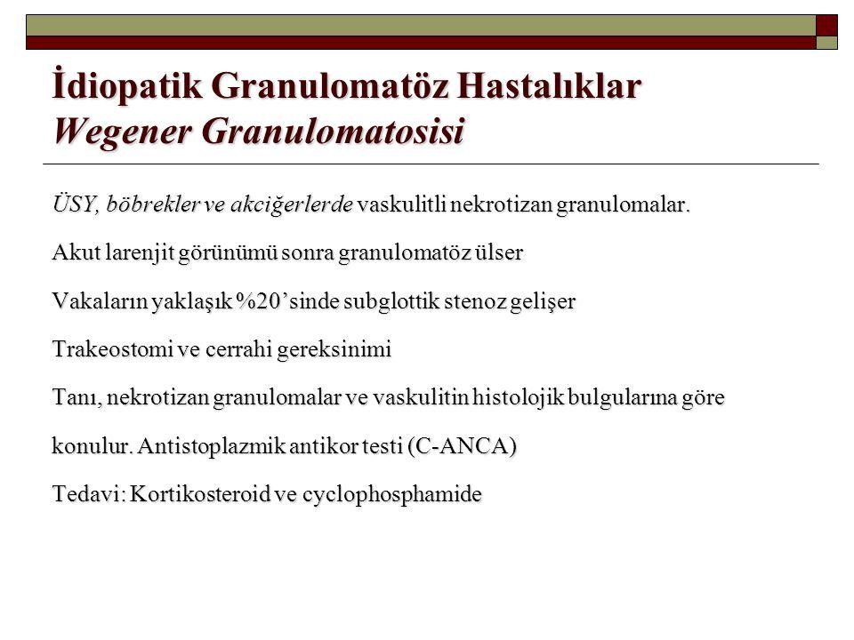 İdiopatik Granulomatöz Hastalıklar Wegener Granulomatosisi