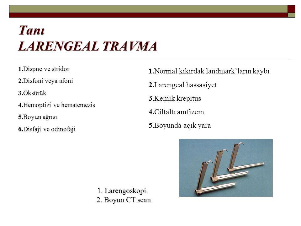 Tanı LARENGEAL TRAVMA 1.Normal kıkırdak landmark'ların kaybı