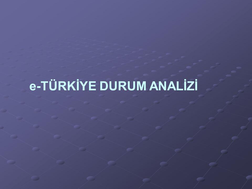 e-TÜRKİYE DURUM ANALİZİ