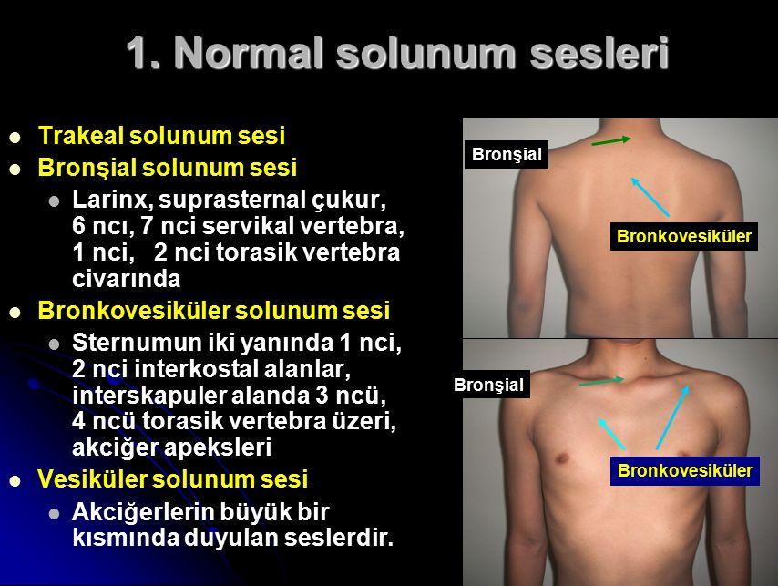 1. Normal solunum sesleri