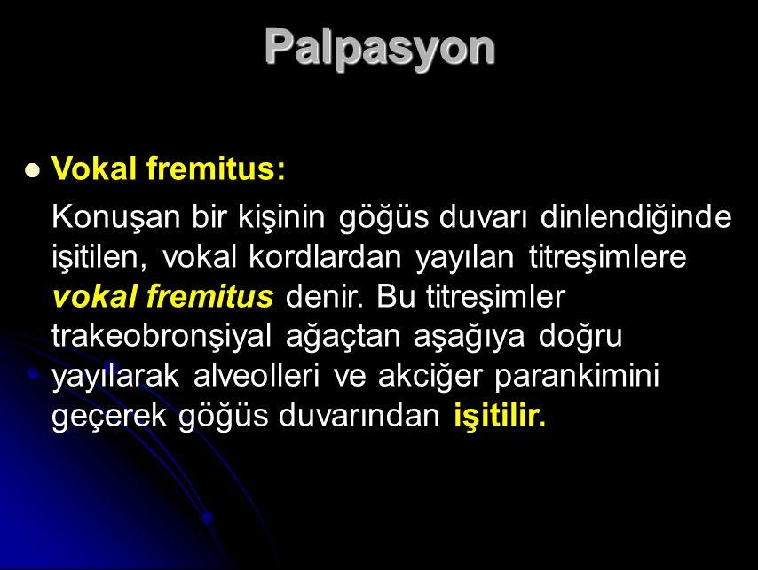 Palpasyon Vokal fremitus: