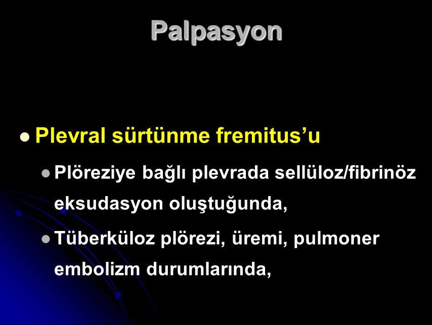 Palpasyon Plevral sürtünme fremitus'u