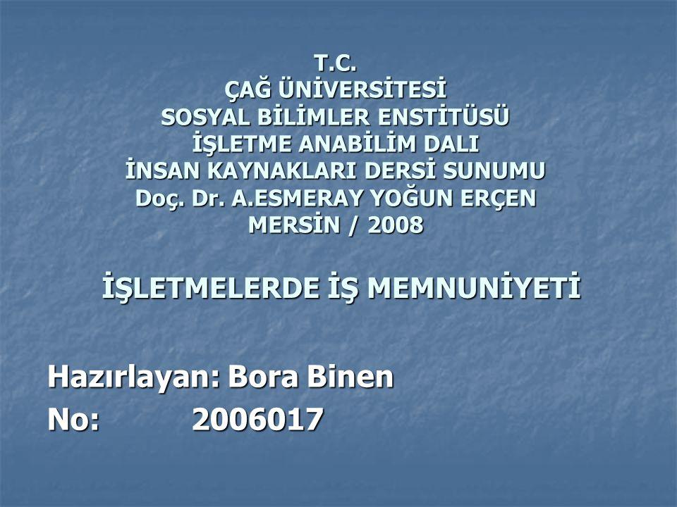 Hazırlayan: Bora Binen No: 2006017