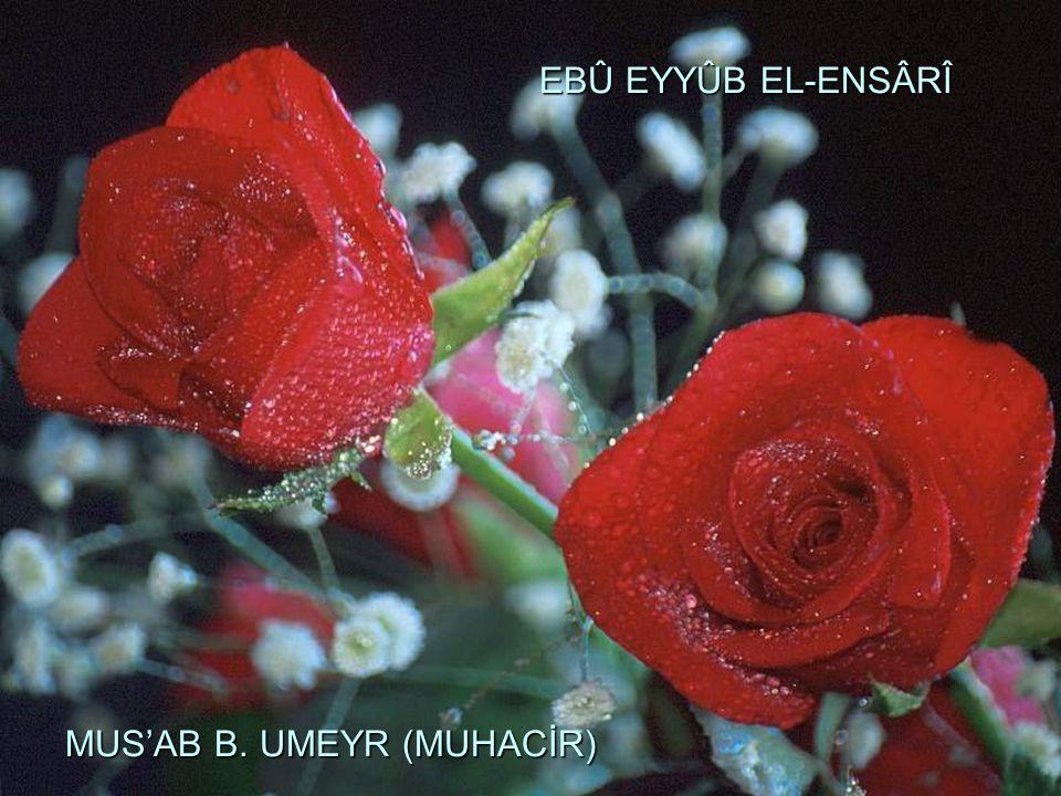 EBÛ EYYÛB EL-ENSÂRÎ MUS'AB B. UMEYR (MUHACİR)