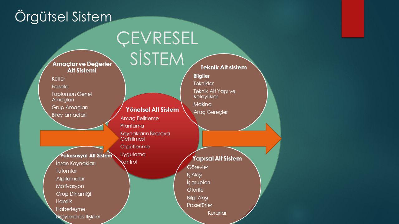 Amaçlar ve Değerler Alt Sistemi Psikososyal Alt Sistem