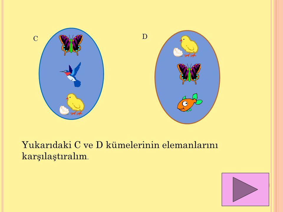 Yukarıdaki C ve D kümelerinin elemanlarını karşılaştıralım.