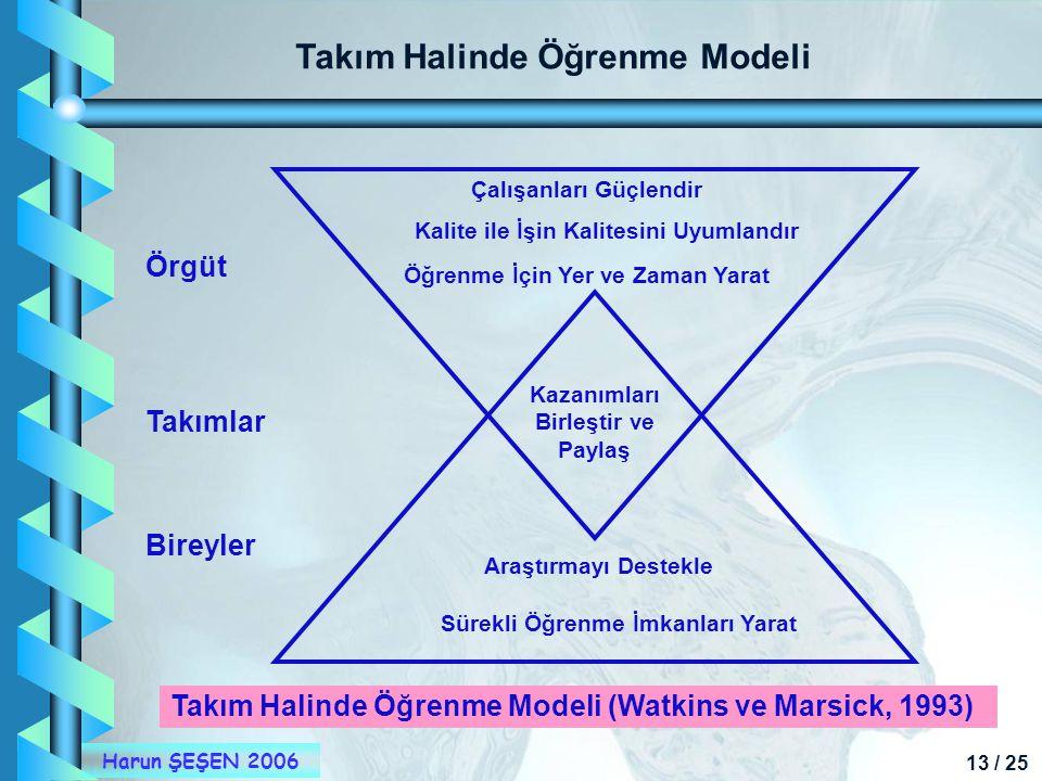 Takım Halinde Öğrenme Modeli