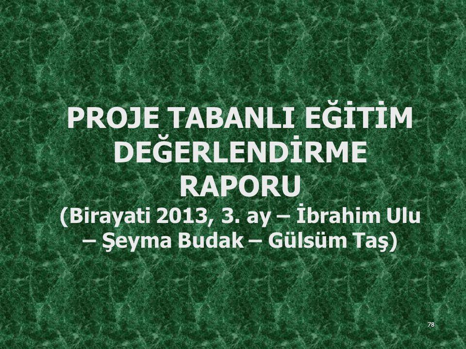 PROJE TABANLI EĞİTİM DEĞERLENDİRME RAPORU (Birayati 2013, 3
