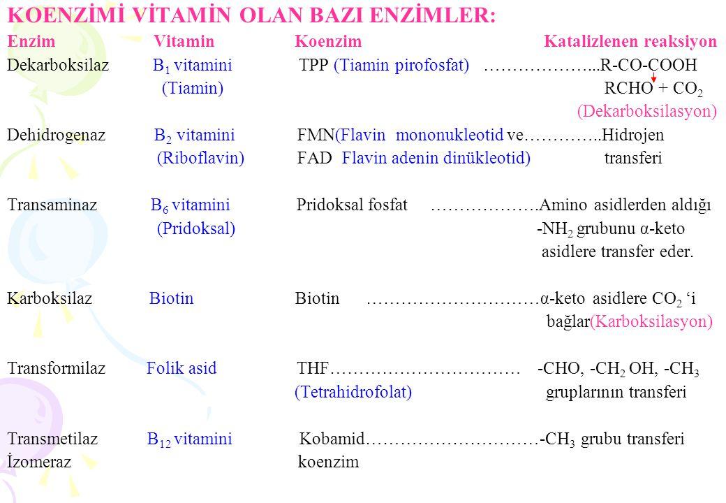 ENZİMLER Prof. Dr. Emel ULAKOĞLU ZENGİN İ. Ü