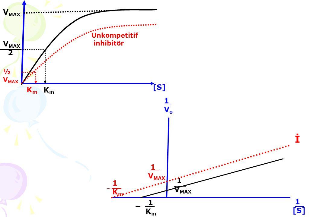 Enzimlerin katalizledikleri reaksiyonlarda genel kimyasal reaksiyon