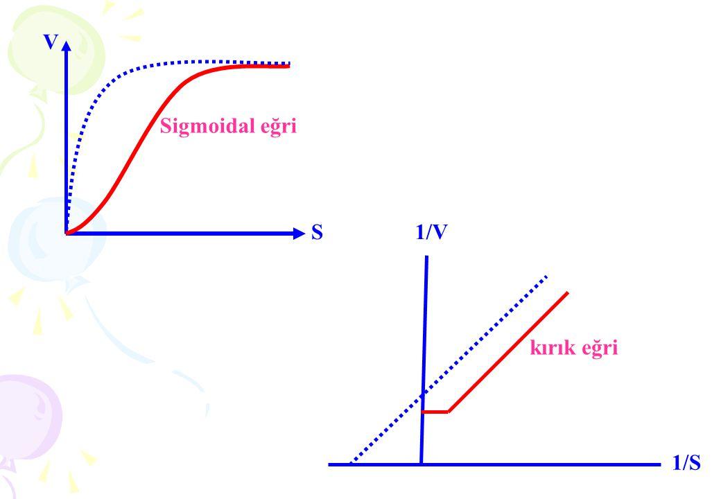 . . Lineweaver-Burk çift-resiprok Eğrisi 1 V0 Km Eğim VMAX 1 VMAX 1 1