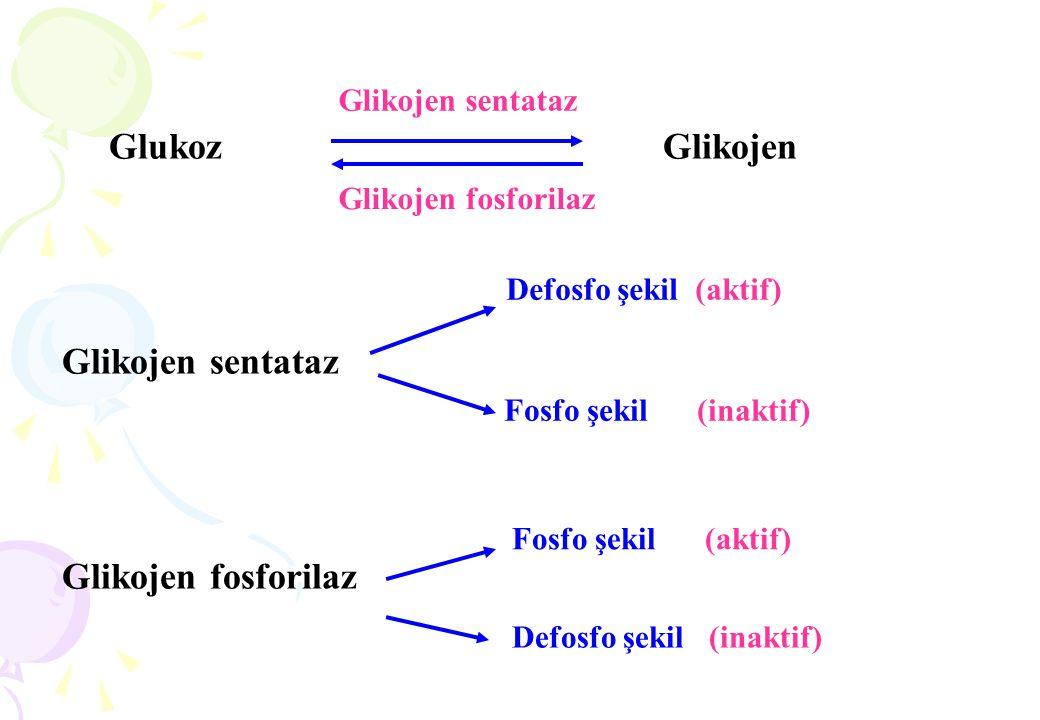 1-Geriye dönüşümlü (reversibl) inhibisyonlar: