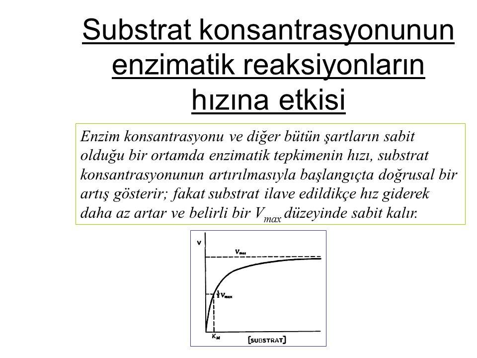 Substrat konsantrasyonunun enzimatik reaksiyonların hızına etkisi