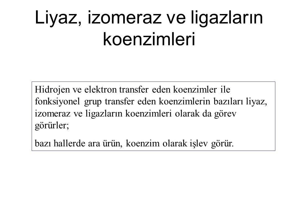 Liyaz, izomeraz ve ligazların koenzimleri