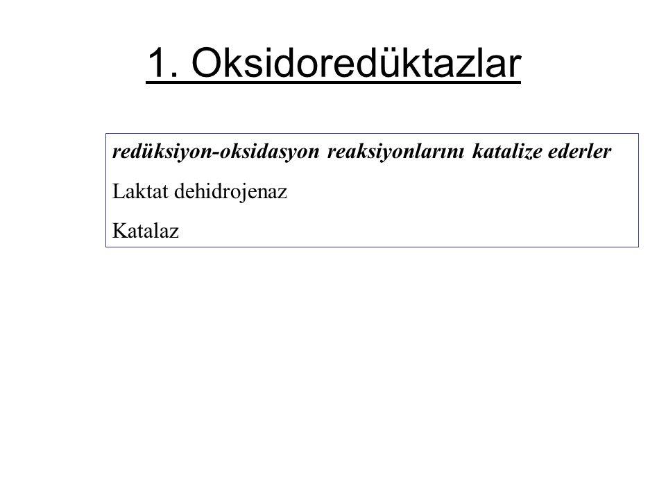 1. Oksidoredüktazlar redüksiyon-oksidasyon reaksiyonlarını katalize ederler.