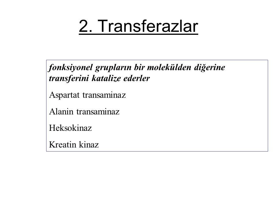 2. Transferazlar fonksiyonel grupların bir molekülden diğerine transferini katalize ederler. Aspartat transaminaz.