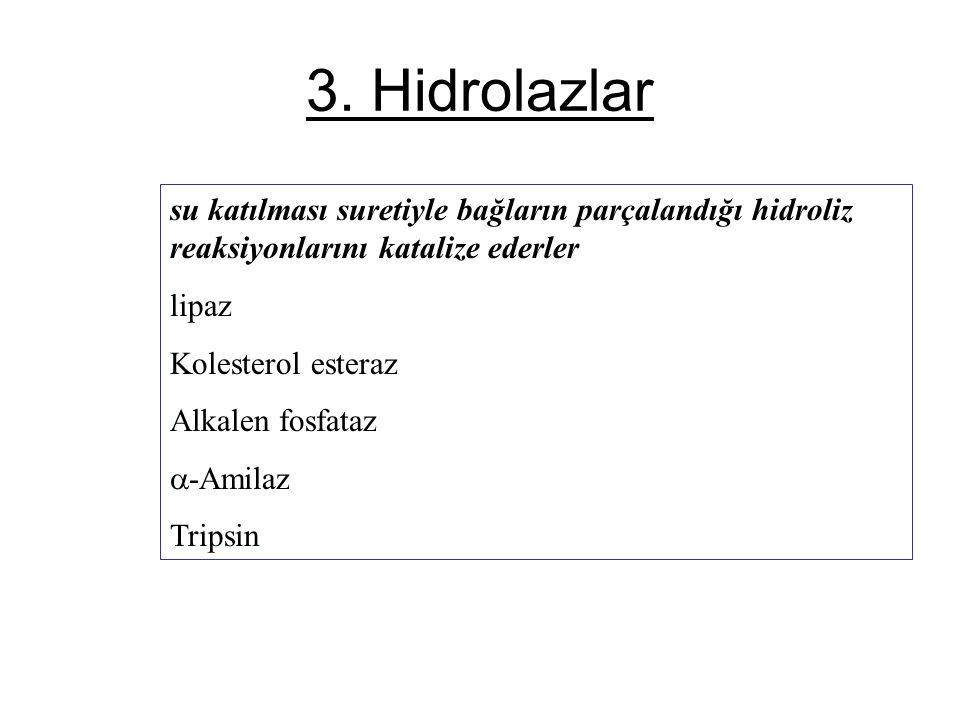 3. Hidrolazlar su katılması suretiyle bağların parçalandığı hidroliz reaksiyonlarını katalize ederler.