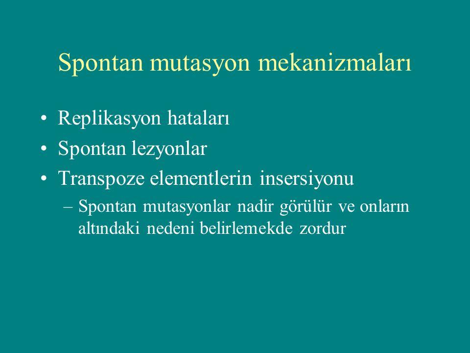 Spontan mutasyon mekanizmaları