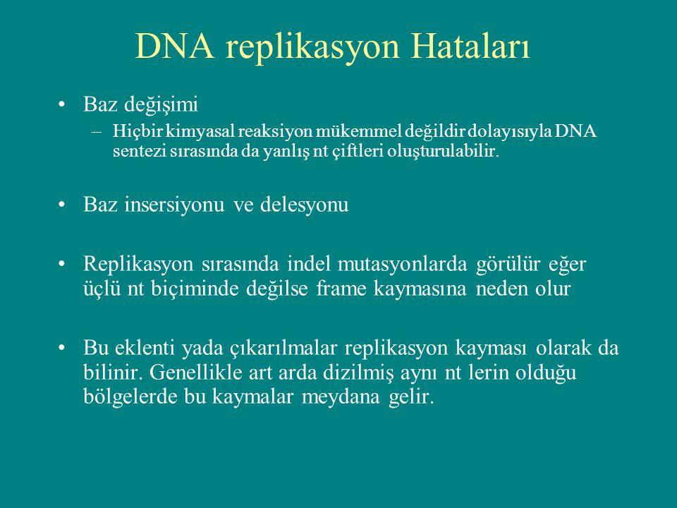 DNA replikasyon Hataları