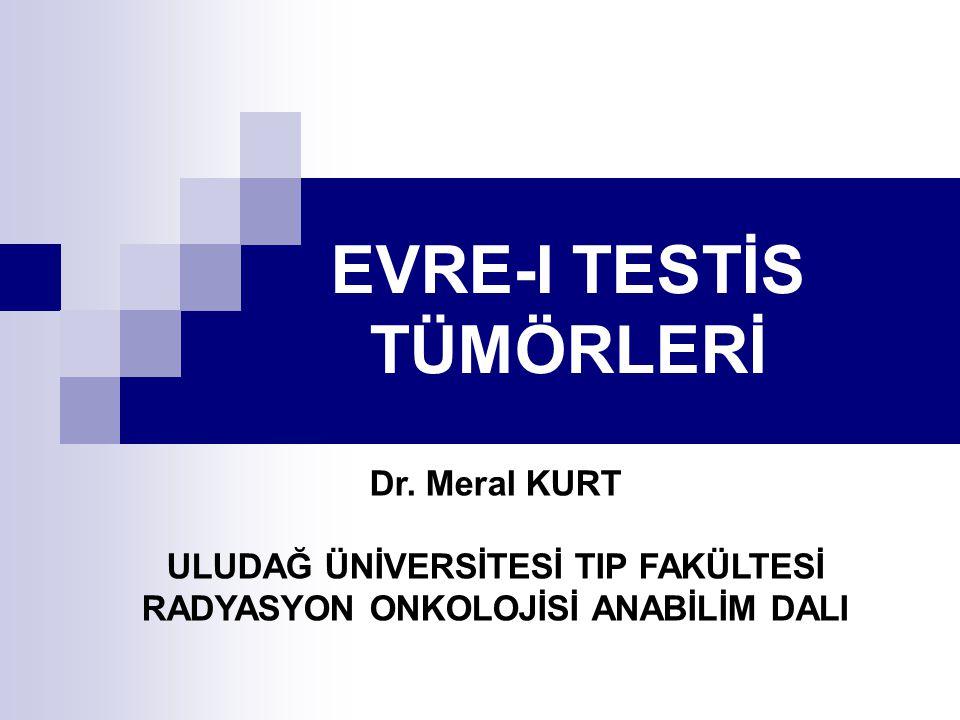 EVRE-I TESTİS TÜMÖRLERİ