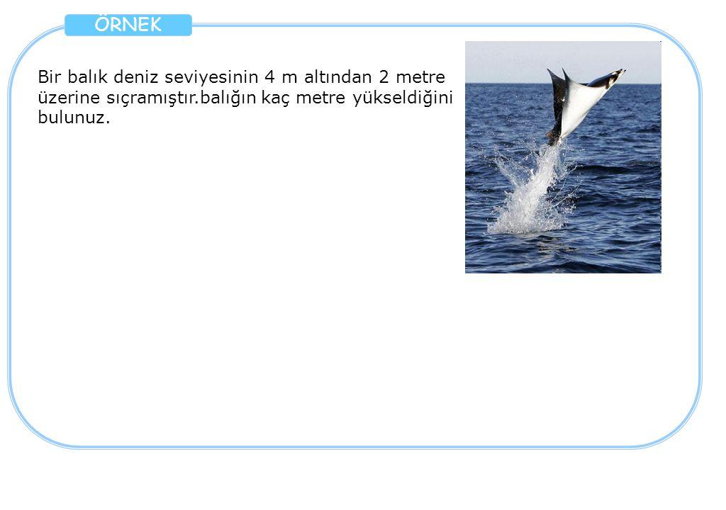 ÖRNEK Bir balık deniz seviyesinin 4 m altından 2 metre üzerine sıçramıştır.balığın kaç metre yükseldiğini bulunuz.