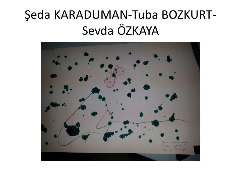 Şeda KARADUMAN-Tuba BOZKURT-Sevda ÖZKAYA