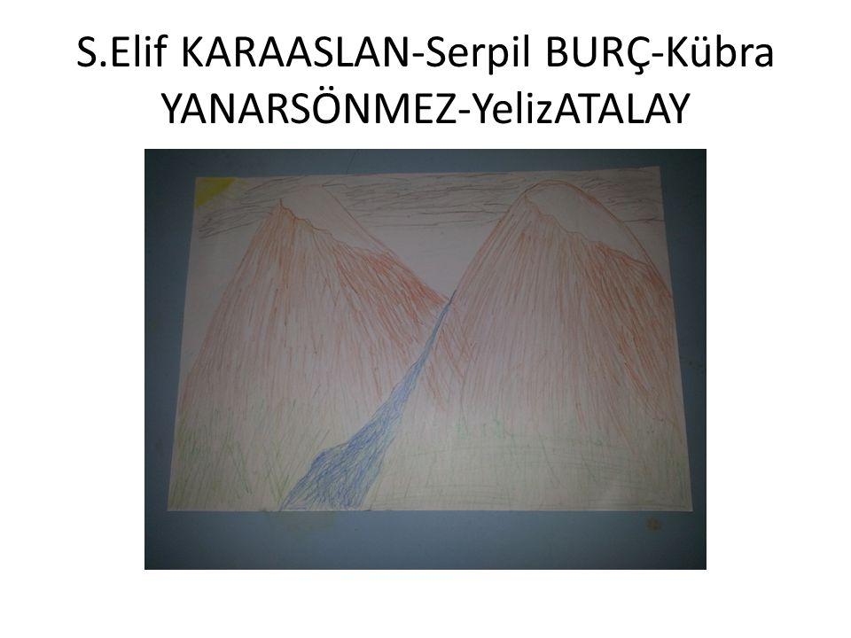 S.Elif KARAASLAN-Serpil BURÇ-Kübra YANARSÖNMEZ-YelizATALAY