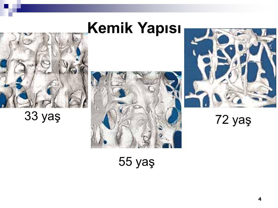 Kemik Yapısı 33 yaş 72 yaş 55 yaş