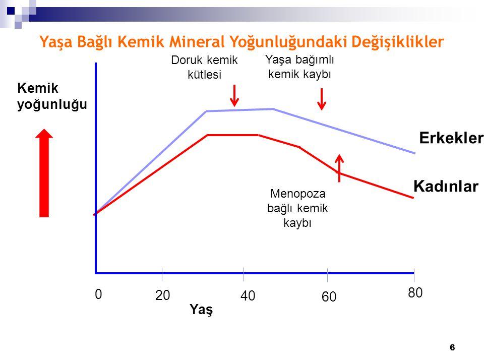 Yaşa Bağlı Kemik Mineral Yoğunluğundaki Değişiklikler