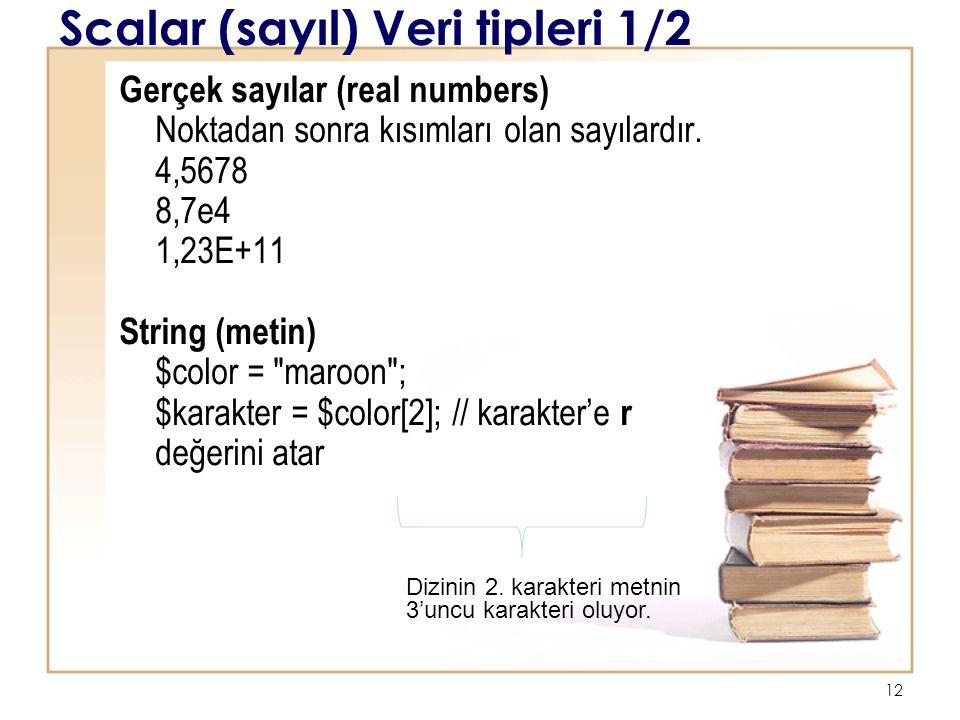 Scalar (sayıl) Veri tipleri 1/2
