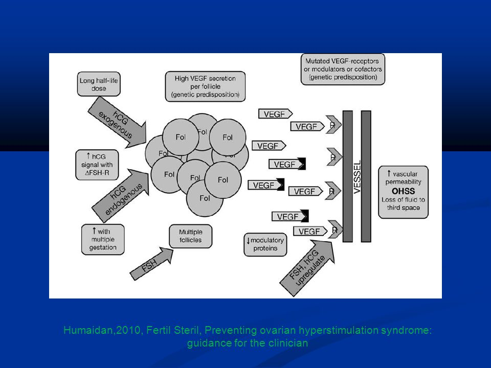Humaidan,2010, Fertil Steril, Preventing ovarian hyperstimulation syndrome: guidance for the clinician