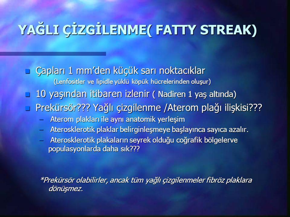 YAĞLI ÇİZGİLENME( FATTY STREAK)