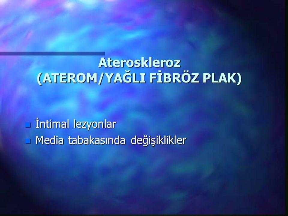 Ateroskleroz (ATEROM/YAĞLI FİBRÖZ PLAK)