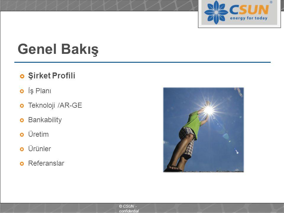 Genel Bakış Şirket Profili İş Planı Teknoloji /AR-GE Bankability